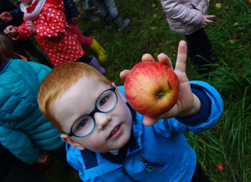 Découverte du verger et atelier cuisine avec des pommes